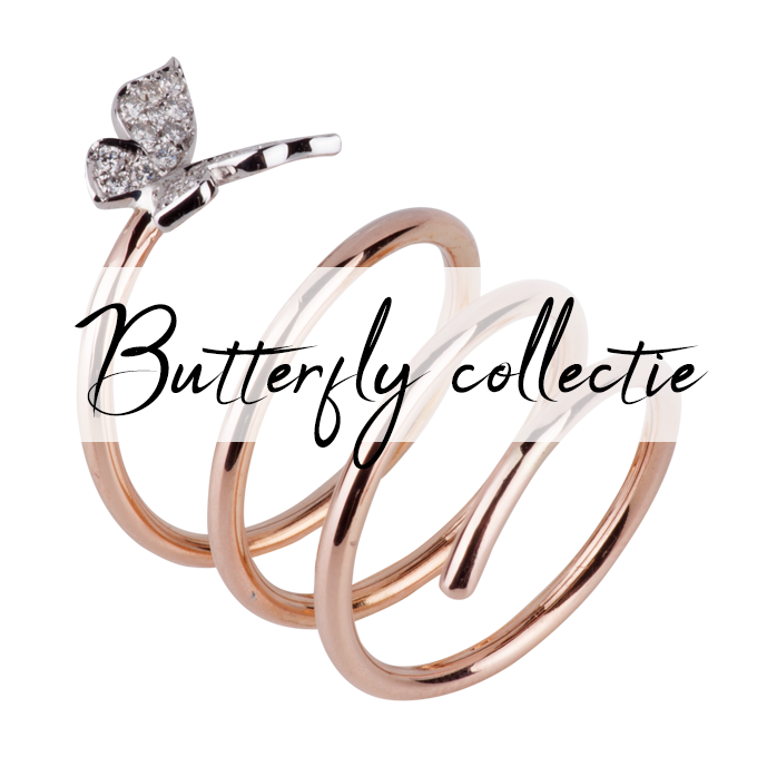 Butterfly collectie